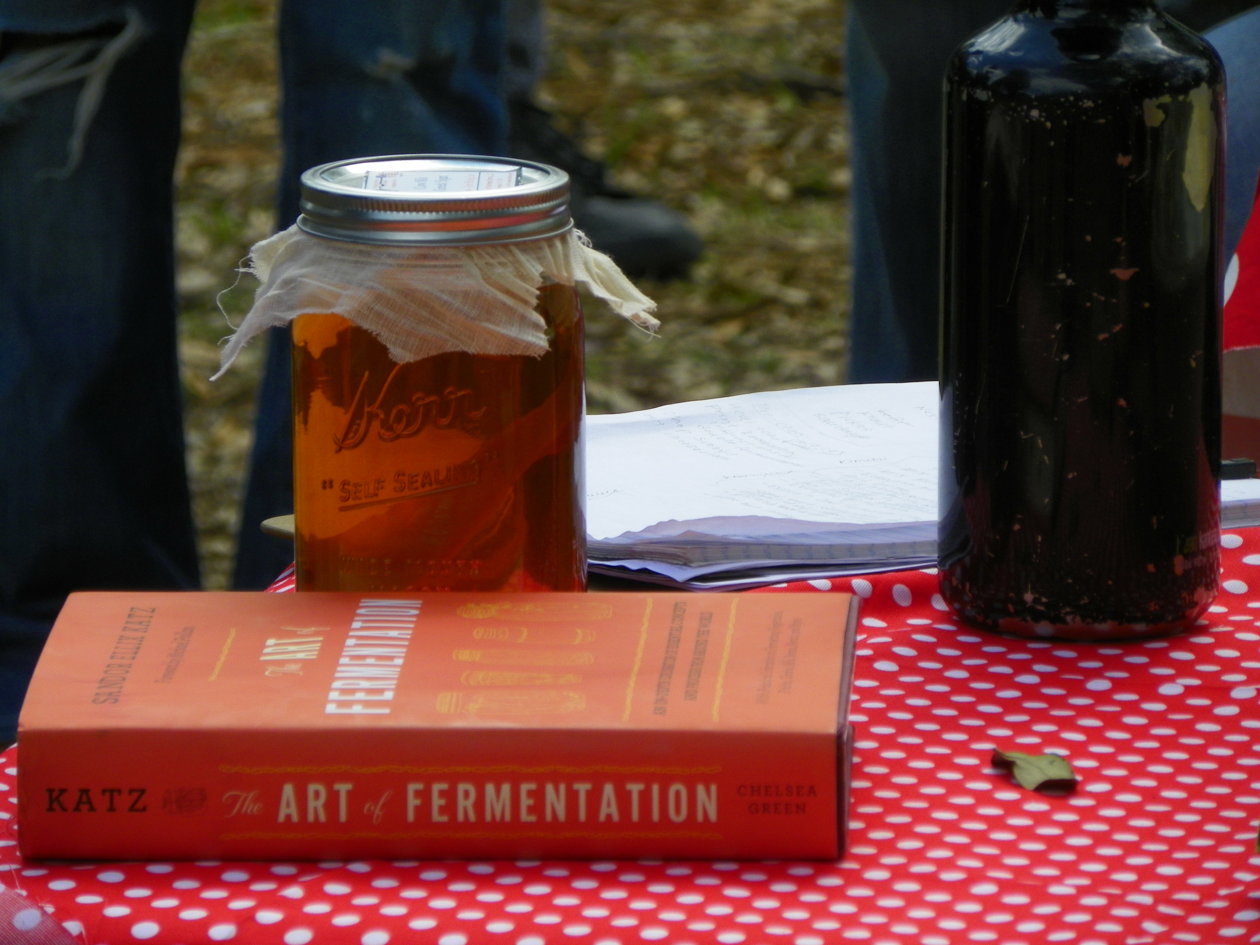 For the love of fermentation! Photo credit: Sherry Boas