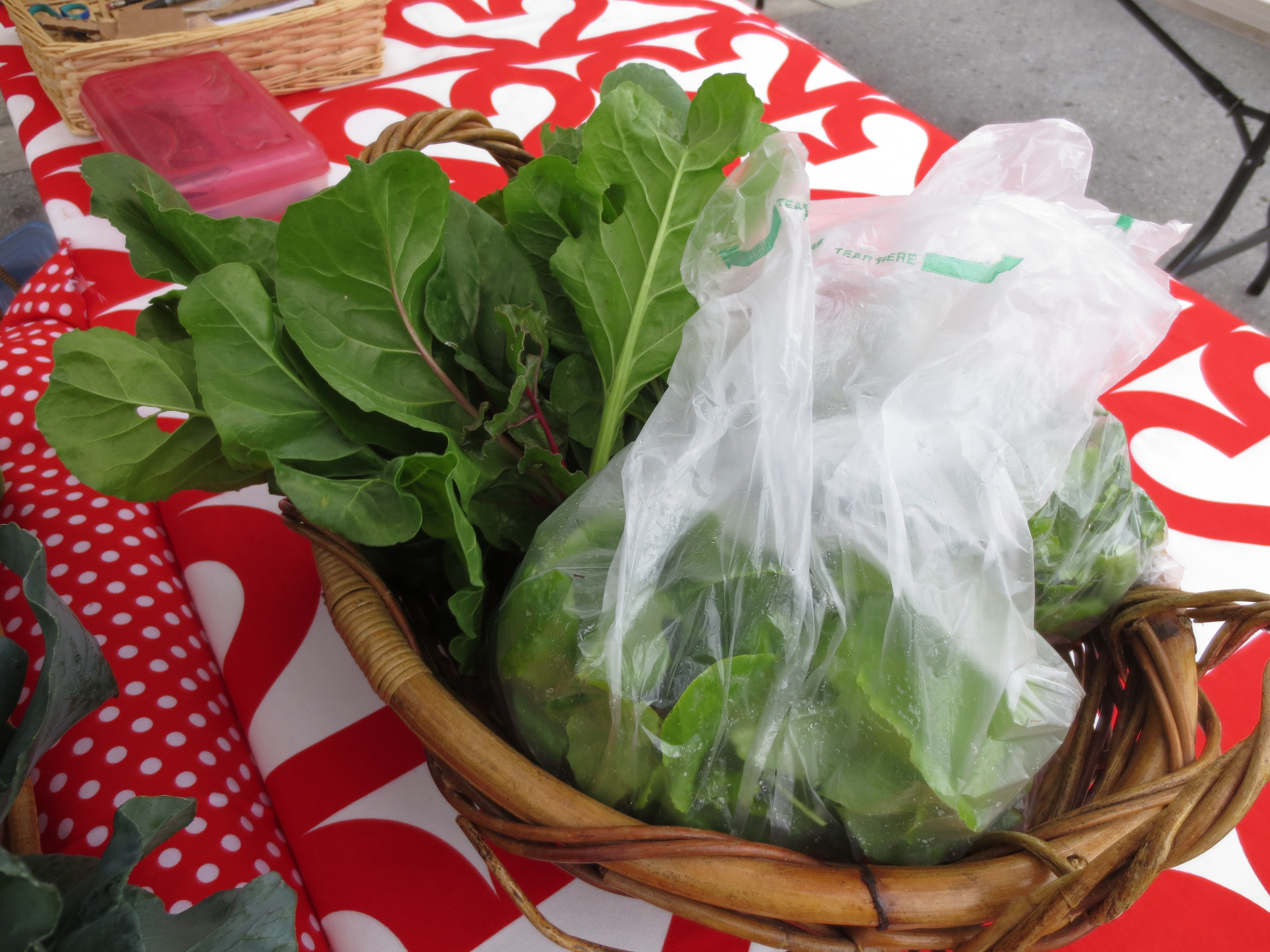 Our swiss chard and let