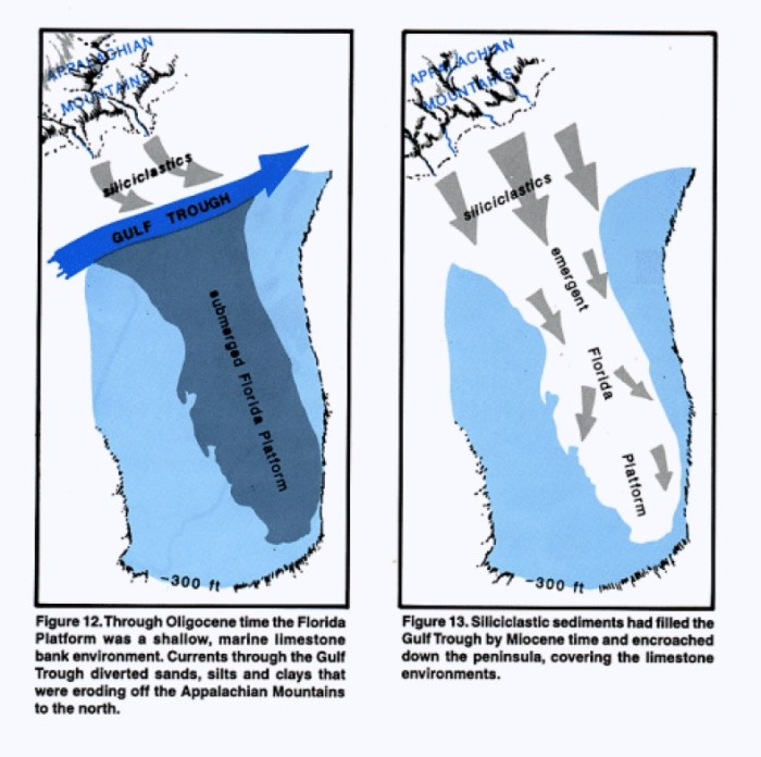 FIGURE 2: Florida bobs above and below the surface of the ocean as waters freeze into and out of glaciers through the ice ages of the Pleistocene Reproduced from Lane 1994, 19.