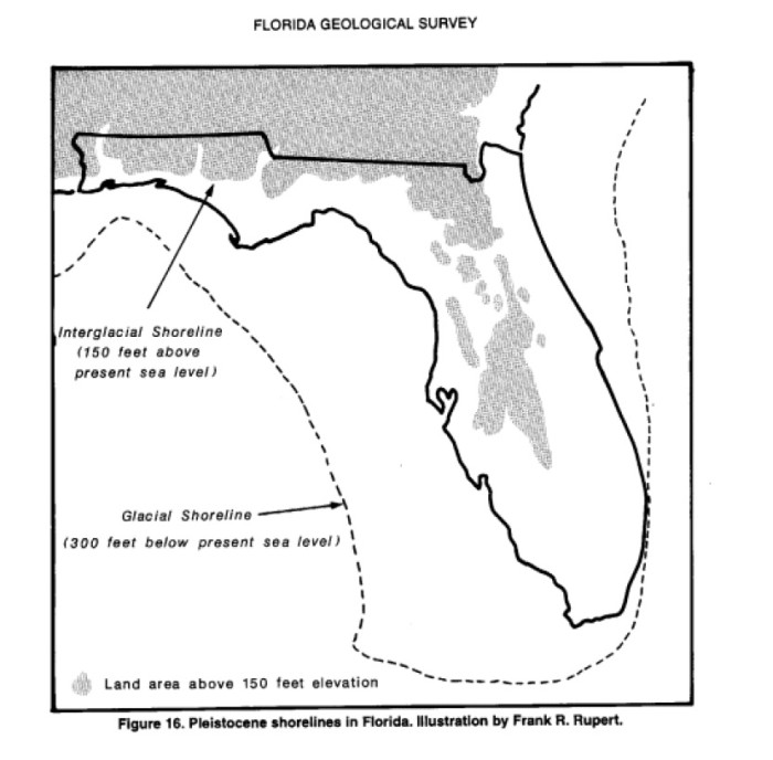 FIGURE 1: Pleistocene shorelines in Florida. Illustration b y Frank R. Rupert. Reproduced from Lane 1994, 22.