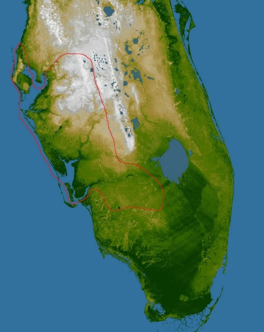 FIGURE 1: Cypress Dome Swamp, Florida Pine Flatwoods bioregion, Adapted from Earth Observatory. 2000.